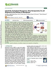 Liquid CO2 Formulated Mesoporous Silica Nanoparticles for pH-Responsive Oral Delivery of Meropenem